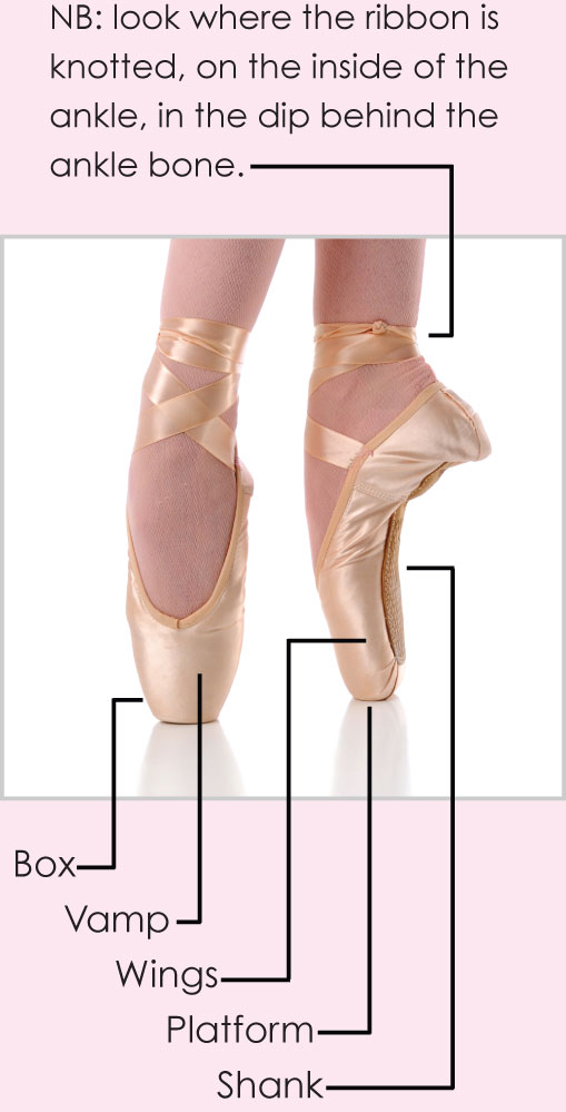 THE POINTE SHOE CENTRE : Professional Pointe Shoe Fitting Advice